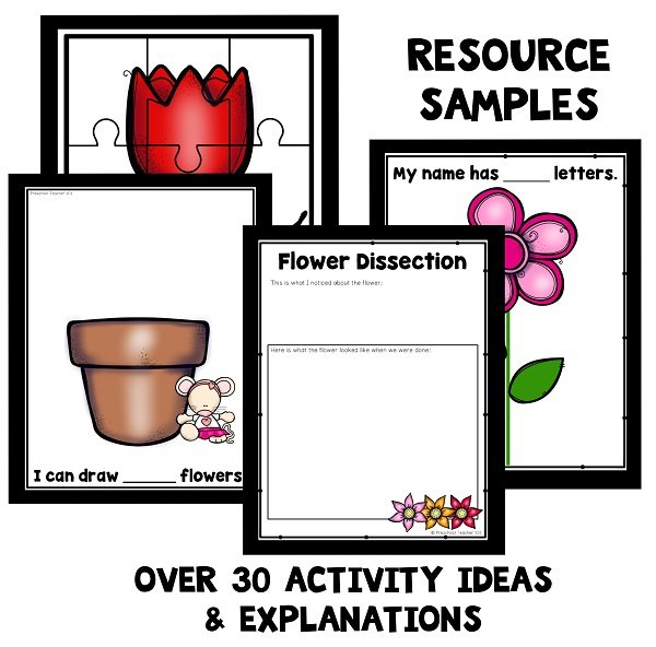 Resource Samples-Chrysanthemum Theme - 600