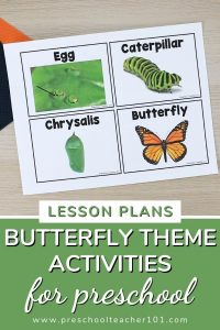 Butterfly Theme Activities for Preschool