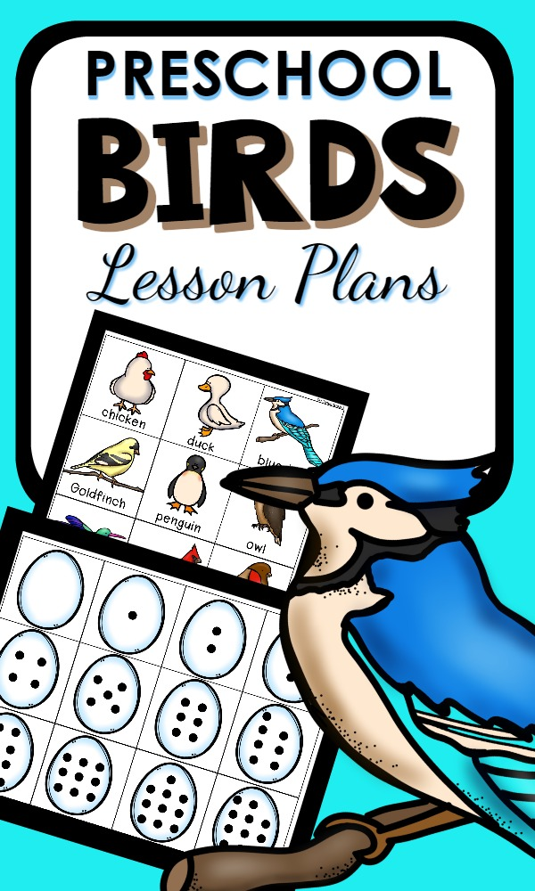 Preschool Bird Theme Activities with lesson plans and printable activities