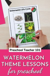Watermelon Theme Lessons for Preschool