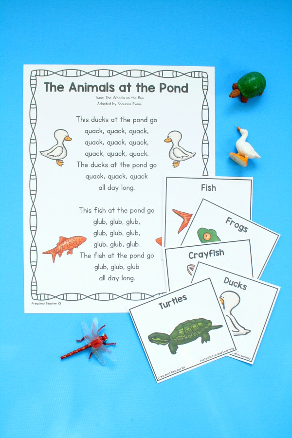 Animals at the Pond Song