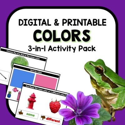 Color Recognition Digital Google Slides Activities for Preschool and Kindergarten